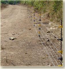 גדר חשמלית קבועה/ניידת למניעת חדירת בע