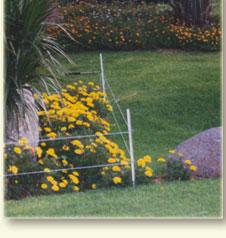 גדר חשמלית קבועה לגינה הפרטית למניעת חדירת / יציאת כלבים
